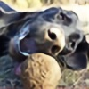 taidoa's avatar