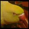 Taima-cat's avatar