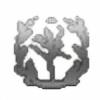 takuUSC's avatar