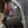 TaliBelle-Cosplay's avatar