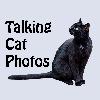 TalkingCatPhotos's avatar