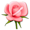 tanninghides's avatar