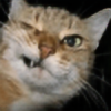 Tarik89's avatar