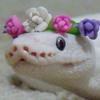 Tarkfir's avatar
