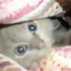 tastycrayons's avatar
