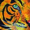 tat0428's avatar