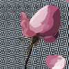 TaurielSaerwen's avatar