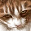 Tawned's avatar