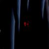 taxor12305's avatar