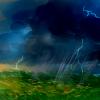 tayleaf's avatar