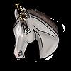 TazEquestrian's avatar