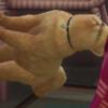 Tazzykiki's avatar