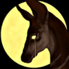 tea-witch's avatar