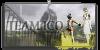 Team-ICO's avatar