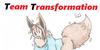 Team-Transformation