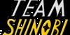 TeamShinobi-fans's avatar