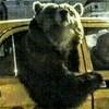 Ted2428's avatar