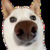 tediouslyCapriconian's avatar