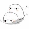 teguana's avatar