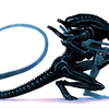 TehFriendlyXeno's avatar