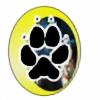 telestrike's avatar