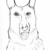 tempdog's avatar