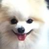 Tena360's avatar