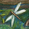 Tenri's avatar