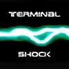 Terminalshock's avatar
