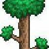 Terrarian-Warrior's avatar