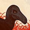 Terraseninian's avatar