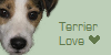 Terrier-Love's avatar