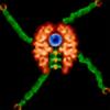 tetran1986's avatar