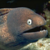thats-a-moray's avatar