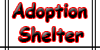 The-Adoption-Shelter's avatar