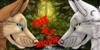 The-AJ-Movie's avatar