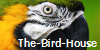 The-Bird-House's avatar