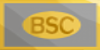 The-BSC's avatar