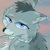 The-Cyan-Wolf's avatar