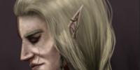 The-Elf-Empire's avatar