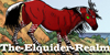 The-Elquider-Realm