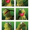the-kermit-kid's avatar
