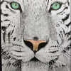 The-Long-Feline's avatar