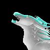 The-NightBreaker's avatar