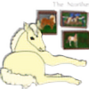 the-northern-stables's avatar