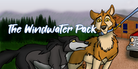 The-Windwater-Pack's avatar