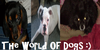 The-world-of-Dogs