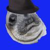 TheAnononymousSeal's avatar