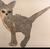 TheblueHydrangea14's avatar
