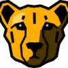 thecheetah-X's avatar